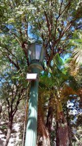 Plaza Uruguay Old Tyme Lamp